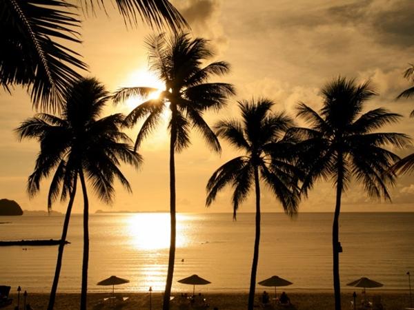 palau pacific resort (4)
