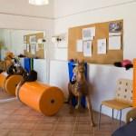 instalaciones S'Hort Vell (11)