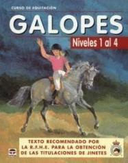 Pony Club: equitación consciente para niños en Mallorca