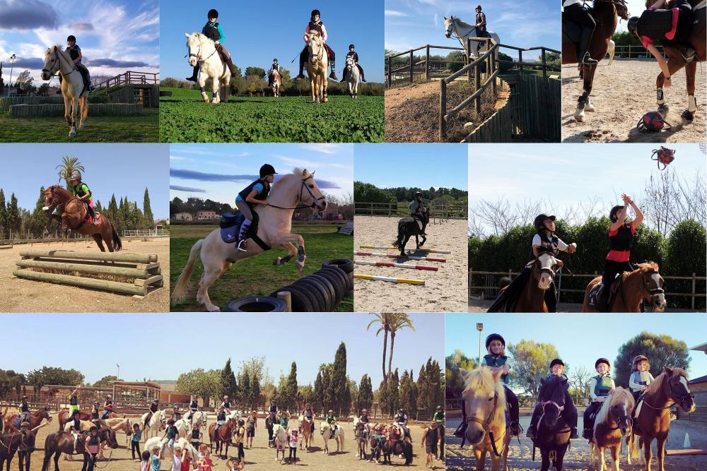 Actividades verano 2021: equitación en S'Hort Vell