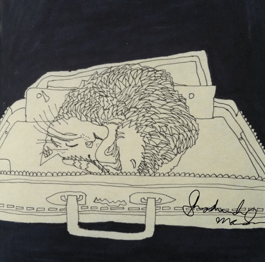 cat in a suitcase by shoshanah marohn 2016