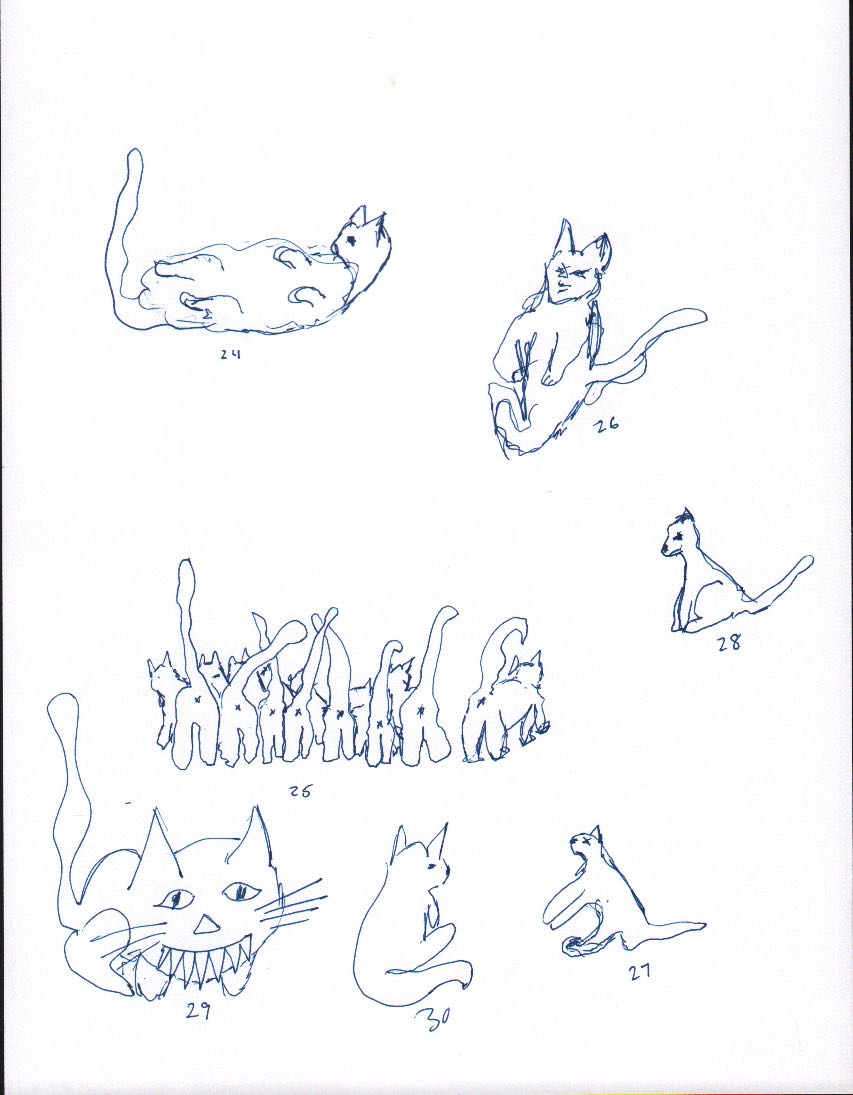 how to draw a cat 3