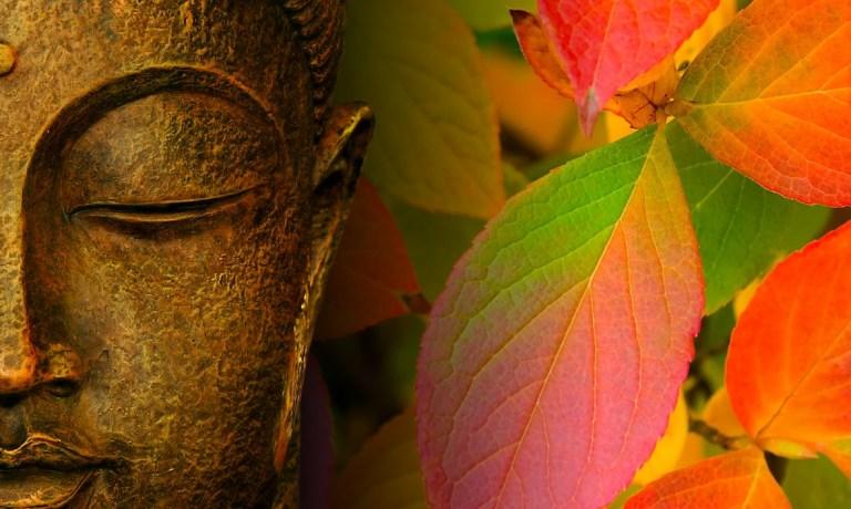 Opt lectii ale lui Buddha