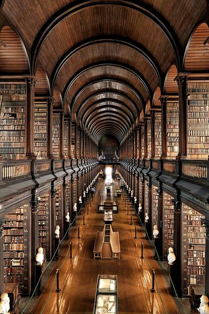 biblioteca 12