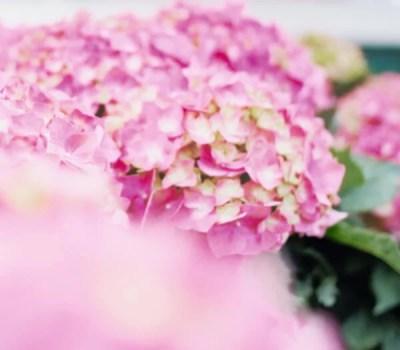 オーダーメイドシャンプー【メデュラ】♪選べる5種類の香りを体感する方法