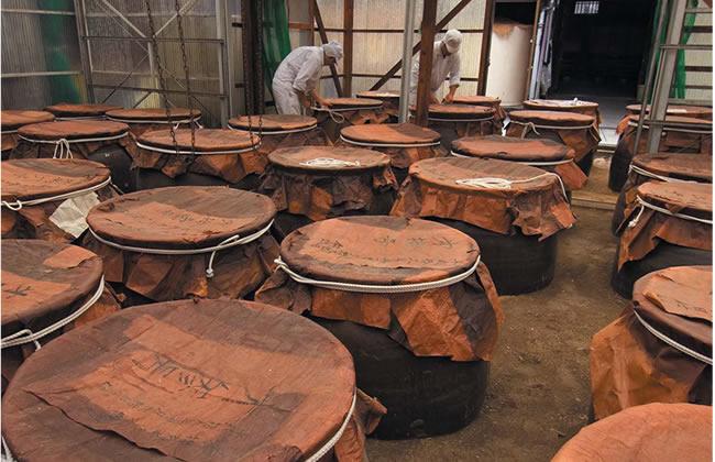 庄分酢 有機玄米くろ酢の仕込み