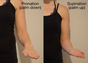 pronation-and-supination