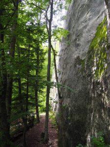 Postavaru climbing area