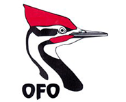ontario field ornithologists link picture