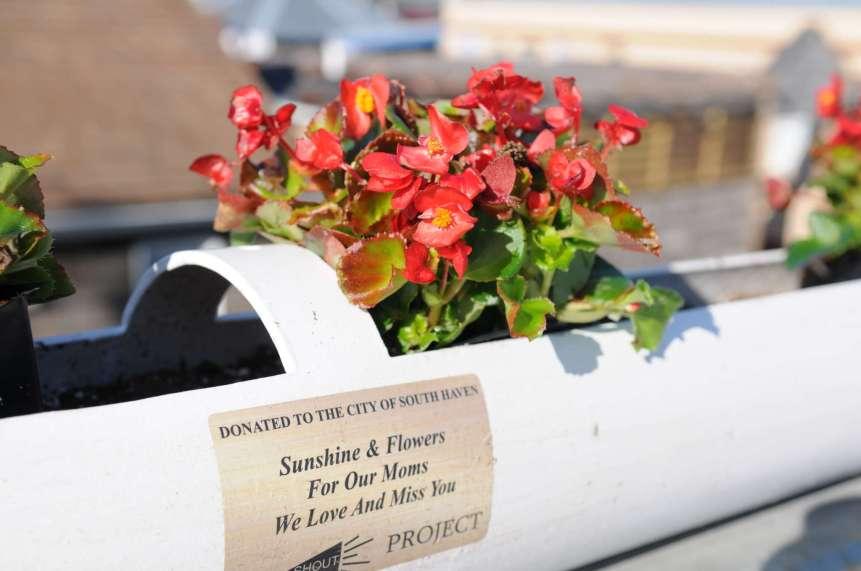 SHOUT Bridge Flowers