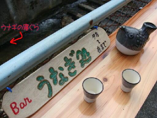 奄美大島のゲストハウス昭和荘のBARカウンター「ウナギ処」