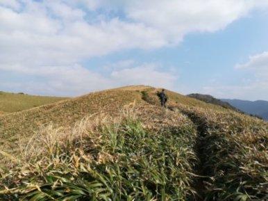 奄美大島・宮古崎を歩くゲストハウス昭和荘スタッフ