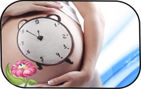 Какой срок беременности по последним месячным