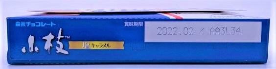 森永製菓 小枝 塩キャラメル チョコレート 箱 お菓子 2021 japanese-snacks-morinaga-koeda-salted-caramel-chocolate-2021