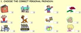 personal pronounssdf