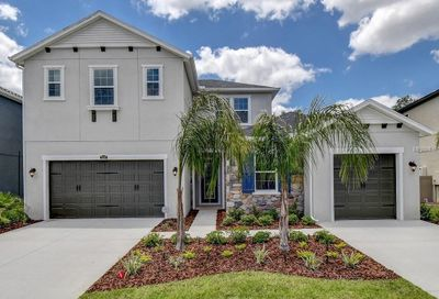 28280 Forelli Court Wesley Chapel FL 33543