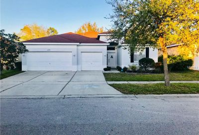 11324 Bridge Pine Drive Riverview FL 33569