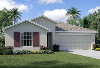 10211 Strawberry Tetra Drive Riverview FL 33578
