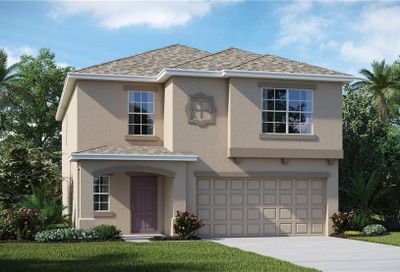 14223 Covert Green Place Riverview FL 33579