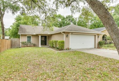 31228 Shinnecock Hills Avenue Sorrento FL 32776