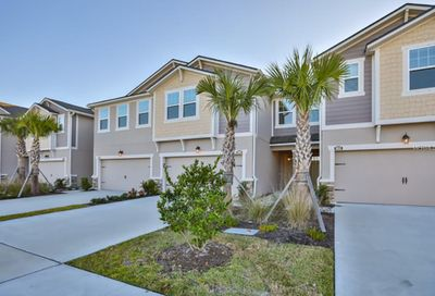 10330 Holstein Edge Place Riverview FL 33569