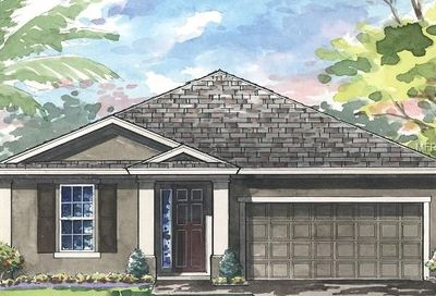 4111 Welling Terrace Land O Lakes FL 34638
