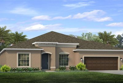 11940 Sunburst Marble Drive Riverview FL 33579