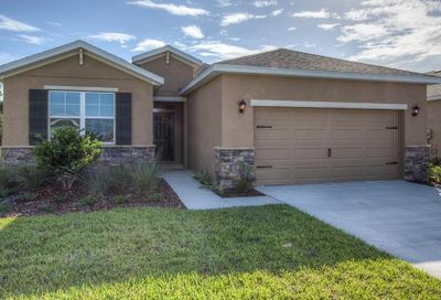 31479 Tansy Bend Wesley Chapel FL 33545