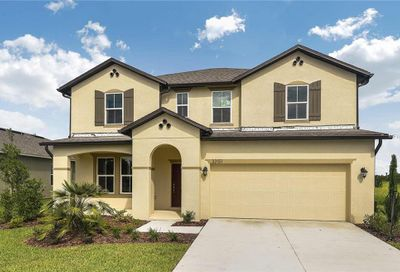 33151 Frogs Leap Lane Wesley Chapel FL 33545