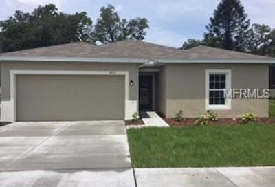10113 Candleberry Woods Lane Gibsonton FL 33534