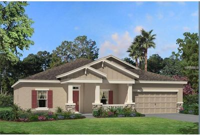 21744 Briske Morning Avenue Land O Lakes FL 34637