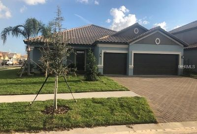 11926 Cinnamon Fern Drive Riverview FL 33579