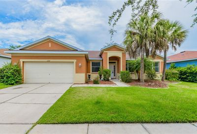 11709 Holly Creek Drive Riverview FL 33569