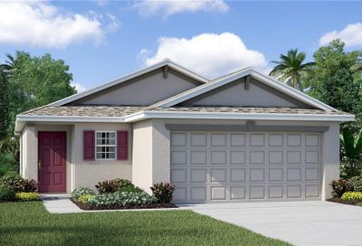 17206 Beach Buttercup Place Wimauma FL 33598