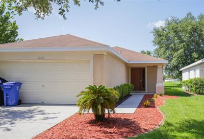 11310 Cocoa Beach Drive Riverview FL 33569
