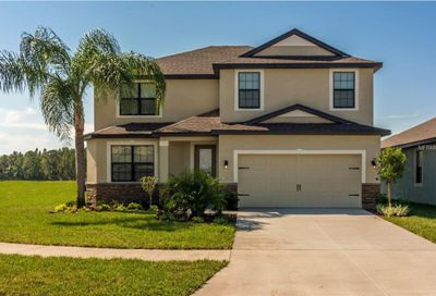 12528 Ballentrae Forest Drive Riverview FL 33579