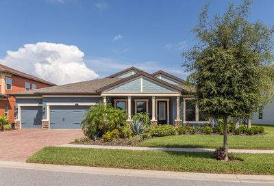 13221 Fawn Lily Drive Riverview FL 33579
