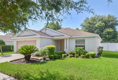 11841 Autumn Creek Drive Riverview FL 33569