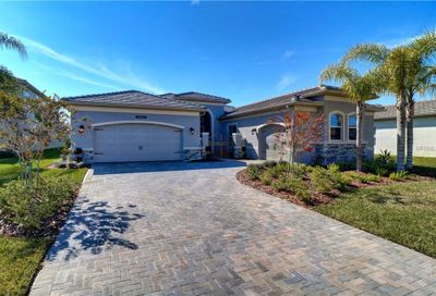 30582 Ivy Forge Court Wesley Chapel FL 33543