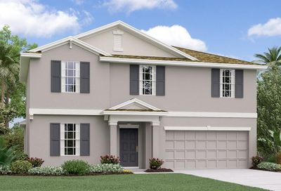 10235 Strawberry Tetra Drive Riverview FL 33578