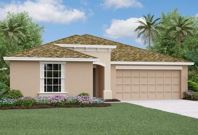 10245 Strawberry Tetra Drive Riverview FL 33578