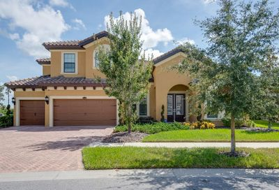 13204 Fawn Lily Drive Riverview FL 33579