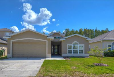 3146 Gianna Way Land O Lakes FL 34638
