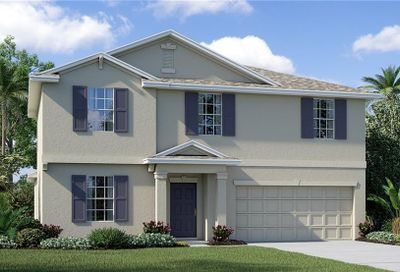 10108 Crested Fringe Drive Riverview FL 33578