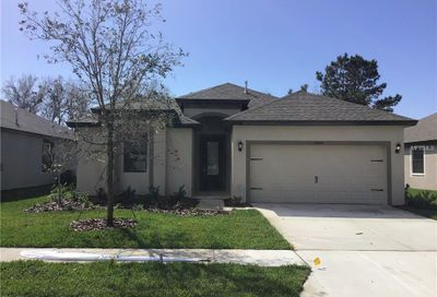 19808 Hidden Glen Drive Land O Lakes FL 34638