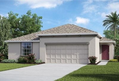 10112 Crested Fringe Drive Riverview FL 33578