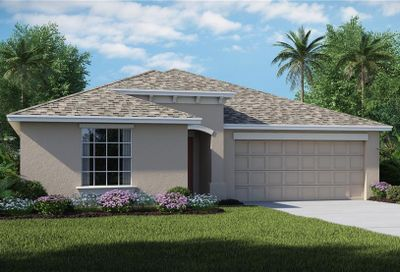 1622 Broad Winged Hawk Drive Ruskin FL 33570