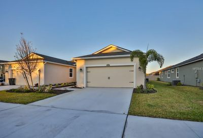 10333 Holstein Edge Place Riverview FL 33569
