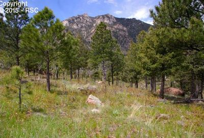 920 Grey Mountain Point Colorado Springs CO 80906