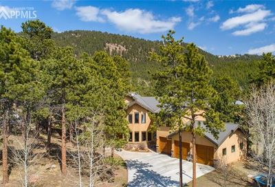 1035 Skyline Court Woodland Park CO 80863